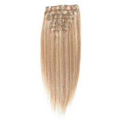 Clip on hair extensions 40 cm #18/613 Blonde Mix